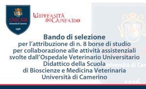 8 Borse di studio presso l'Ospedale Veterinario Didattico – Università di Camerino
