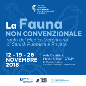 """Corso """"Fauna non convenzionale"""" – Iscrizioni fino al 31 Ottobre"""