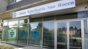 La Clinica Veterinaria San Rocco di Novi Ligure (AL) cerca collaboratori